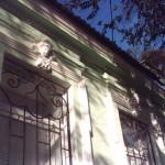 элемент фасадной лепнины
